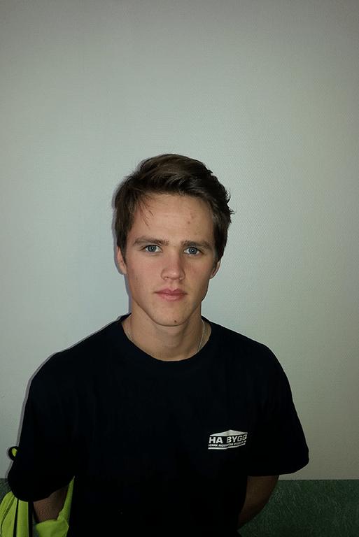 Andre-Ibsonius-webb